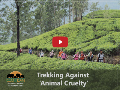 Trekking Against Animal Cruelty.jpg