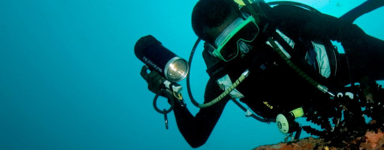 Ship Wreck Diving in Sri Lanka