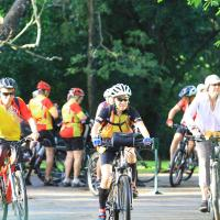 Cycling Tours 4day